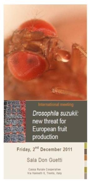 Convegno - Drosophila suzukii: una nuova minaccia per le produzioni frutticole europee