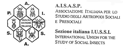 Logo AISASP